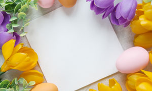 一块布与花朵彩蛋边框创意高清图片