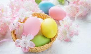 粉色鲜花与复活节彩蛋特写高清图片