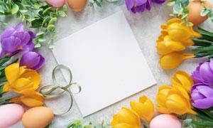 缎带花朵与彩蛋等边框摄影高清图片