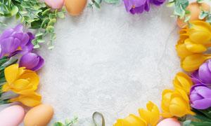 复活节彩蛋与鲜花边框摄影高清图片