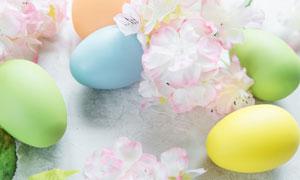 复活节彩蛋与粉色花朵特写高清图片