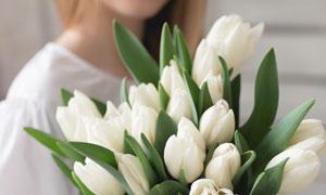 美女人物手里的郁金香摄影高清图片