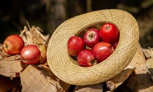 在草帽里的红苹果特写摄影高清图片