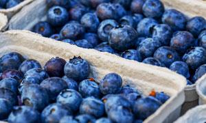 分装好摆摊的蓝莓特写摄影高清图片
