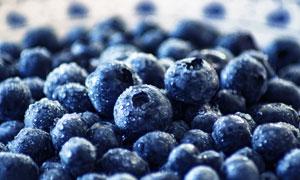 精心筛选后的品质蓝莓摄影高清图片