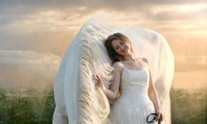 手牵着一匹白马的新娘摄影高清图片