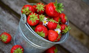 在桶里的新鲜草莓特写摄影高清图片