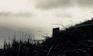 天空乌云大海杂草风景摄影高清图片