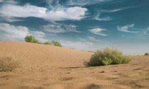 蓝天白云沙漠植被风光摄影高清图片