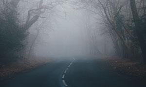 弥漫着浓雾的柏油公路摄影高清图片