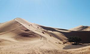 蔚蓝天空下的连绵沙丘摄影高清图片