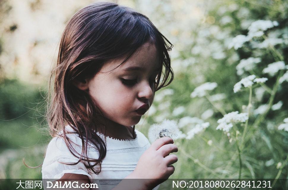 吹蒲公英的可爱小女孩摄影高清图片