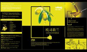 橄榄油宣传三折页设计矢量素材