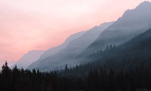 霞光云雾中的群山树木摄影高清图片