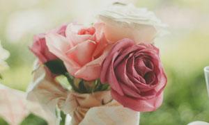 绑在一起的玫瑰花特写摄影高清图片