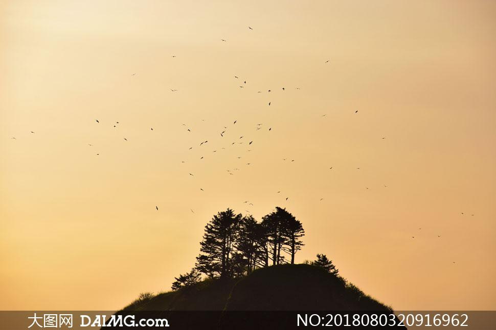 cc0; 关 键 词: 高清摄影大图图片素材自然风景风光剪影大山高山山峰