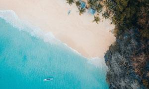 碧海沙滩椰树自然风景摄影高清图片
