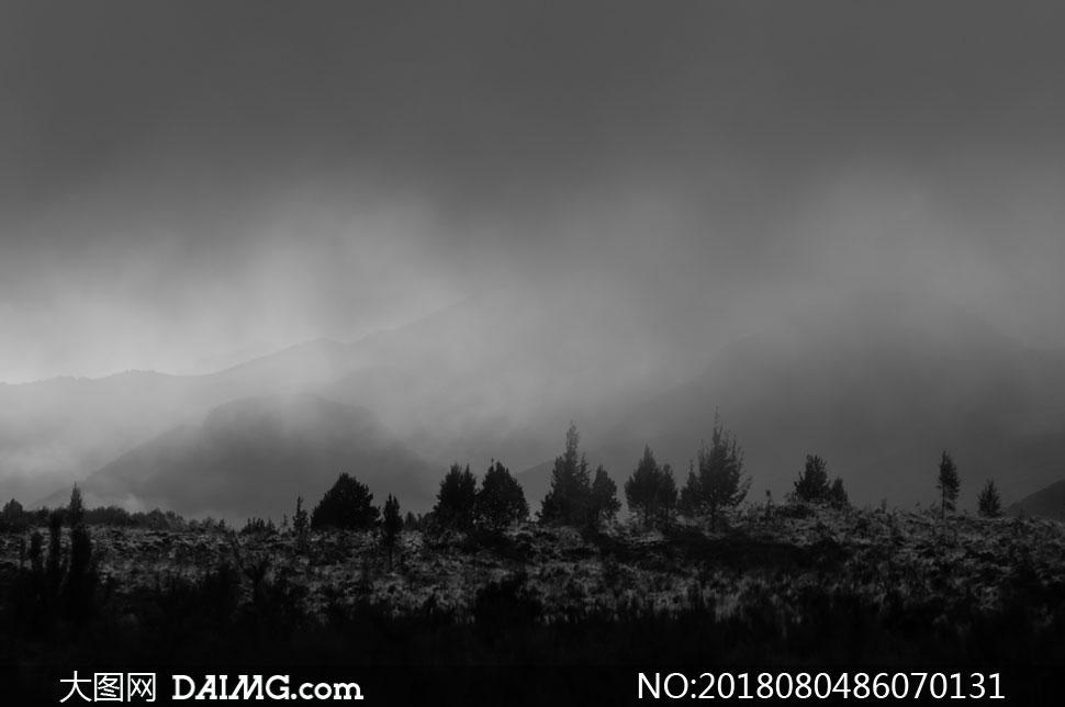 树木与隐约可见的山峦摄影高清图片