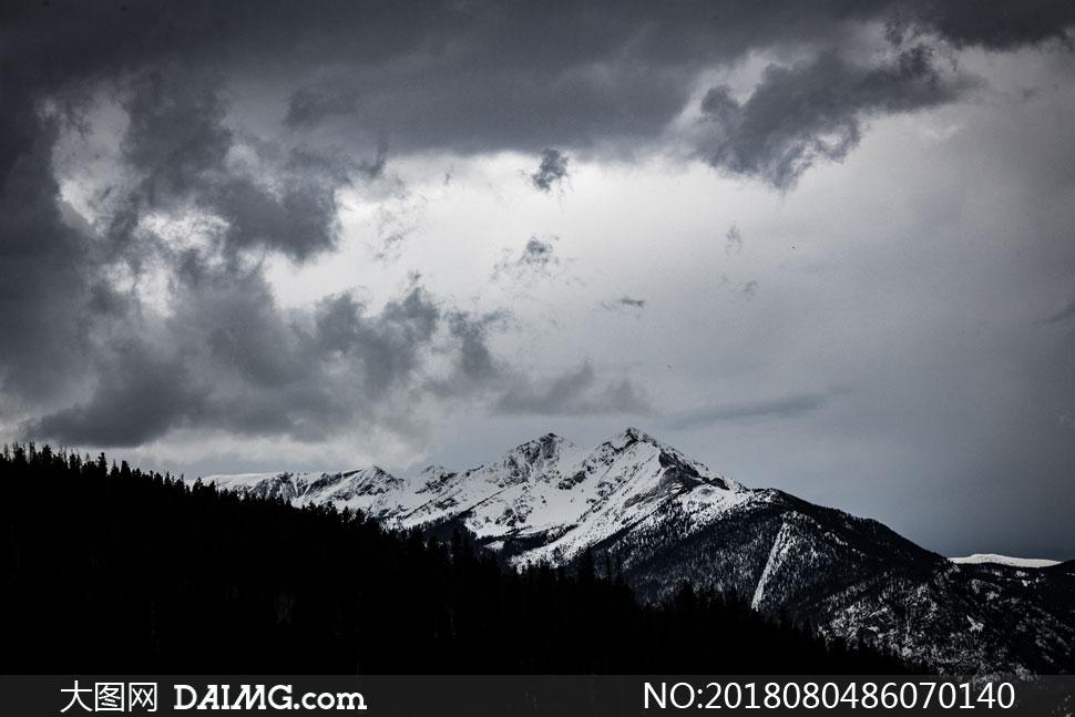 雪山风光与山坡上树木剪影高清图片