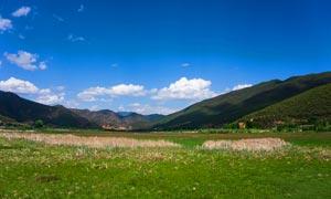 泸沽湖边绿色草地美景摄影图片