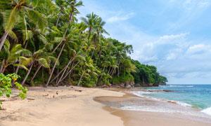 蓝天白云大海小岛椰树摄影高清图片