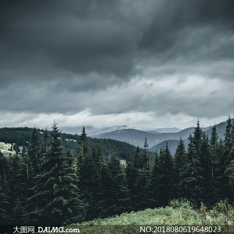 乌云树林与远处的山峦摄影高清图片