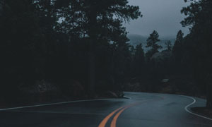 道路与山间的树木风光摄影高清图片