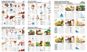 人体器官与蔬菜等信息图表矢量素材
