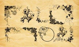 时尚的手绘花边和藤蔓PS笔刷