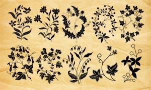 15款手绘花枝和藤蔓PS笔刷