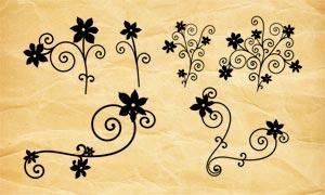 纤细的缠绕花纹笔刷