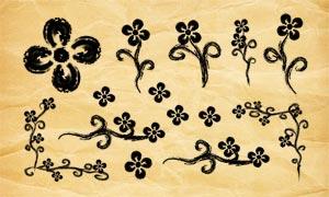 手绘铅笔花朵和边角PS笔刷