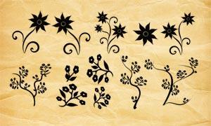 矢量风格花朵和花枝PS笔刷