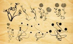 抽象的纤细花纹和花朵PS笔刷