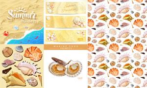 夏天貝殼與沙灘上的螃蟹等矢量素材