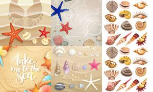 夏日沙灘上的貝殼海星主題矢量素材
