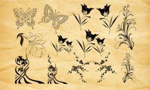 唯美花朵花纹和点状蝴蝶PS笔刷