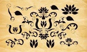 時尚的花紋裝飾PS筆刷