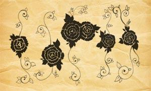 矢量玫瑰花和花藤PS笔刷