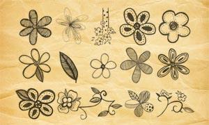 手繪花朵和葉子PS筆刷V1