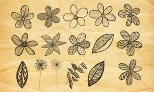 手繪花朵和葉子PS筆刷V2