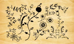 手绘花纹装饰PS笔刷