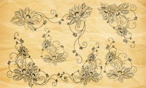 手機花朵和藤蔓裝飾PS筆刷