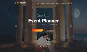 赛事演出票务经纪公司网站设计模板