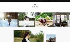 个人博客类型网站设计模板分层素材