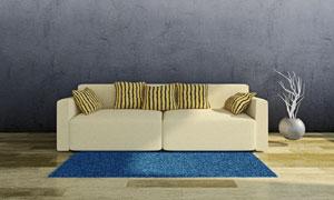 地毯沙发抱枕与干枝装饰品高清图片