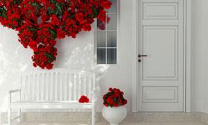 红色鲜花与白色的长椅渲染效果图片