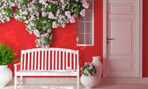 红墙花朵与白色的长椅主题高清图片