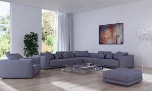 植物绿植与组合式沙发摄影高清图片