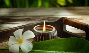 托盘里的蜡烛鲜花特写摄影高清图片